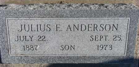 ANDERSON, JULIUS E. - Dodge County, Nebraska | JULIUS E. ANDERSON - Nebraska Gravestone Photos