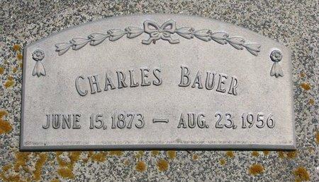 BAUER, CHARLES - Dodge County, Nebraska   CHARLES BAUER - Nebraska Gravestone Photos