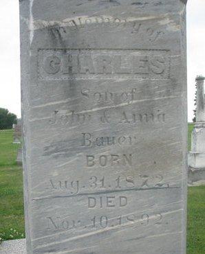 BAUER, CHARLES (CLOSE UP) - Dodge County, Nebraska | CHARLES (CLOSE UP) BAUER - Nebraska Gravestone Photos