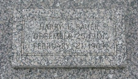 BAUER, HARRY E. - Dodge County, Nebraska | HARRY E. BAUER - Nebraska Gravestone Photos