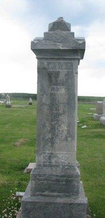 BAUER, ROY - Dodge County, Nebraska | ROY BAUER - Nebraska Gravestone Photos