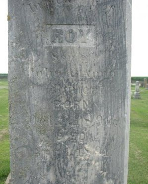 BAUER, ROY (CLOSE UP) - Dodge County, Nebraska | ROY (CLOSE UP) BAUER - Nebraska Gravestone Photos