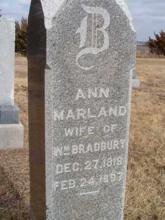 BRADBURY, ANN - Dodge County, Nebraska   ANN BRADBURY - Nebraska Gravestone Photos
