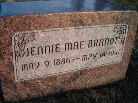 LONG BRANDT, JENNIE MAE - Dodge County, Nebraska | JENNIE MAE LONG BRANDT - Nebraska Gravestone Photos