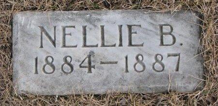 CHAMBERLIN, NELLIE B. - Dodge County, Nebraska | NELLIE B. CHAMBERLIN - Nebraska Gravestone Photos