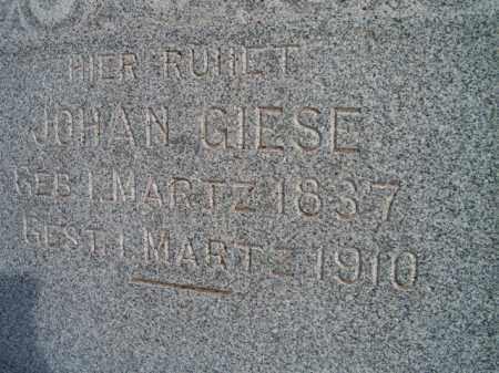GIESE, JOHAN (CLOSE-UP) - Dodge County, Nebraska | JOHAN (CLOSE-UP) GIESE - Nebraska Gravestone Photos