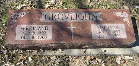 GROVIJOHN, EMILIANA - Dodge County, Nebraska | EMILIANA GROVIJOHN - Nebraska Gravestone Photos