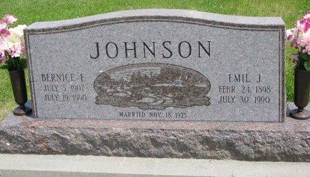 JOHNSON, BERNICE F. - Dodge County, Nebraska | BERNICE F. JOHNSON - Nebraska Gravestone Photos