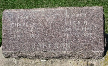 JOHNSON, OLGA DORTHEA - Dodge County, Nebraska | OLGA DORTHEA JOHNSON - Nebraska Gravestone Photos