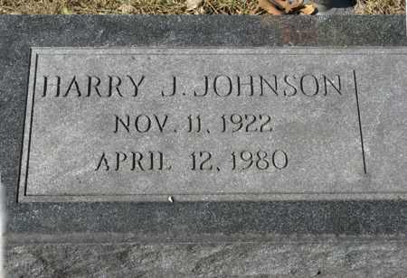 JOHNSON, HARRY J. - Dodge County, Nebraska   HARRY J. JOHNSON - Nebraska Gravestone Photos