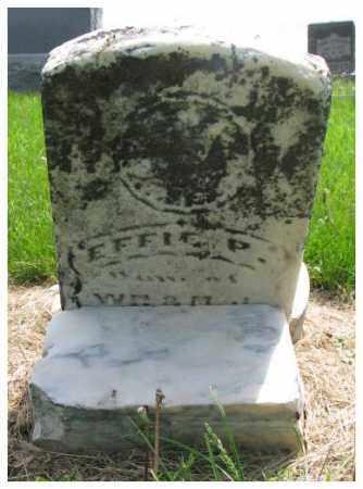 MATSON, EFFIE P. - Dodge County, Nebraska   EFFIE P. MATSON - Nebraska Gravestone Photos