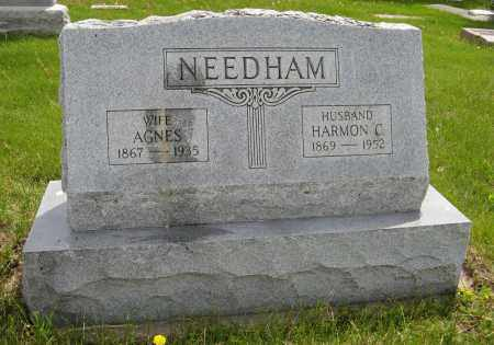 NEEDHAM, AGNES - Dodge County, Nebraska | AGNES NEEDHAM - Nebraska Gravestone Photos