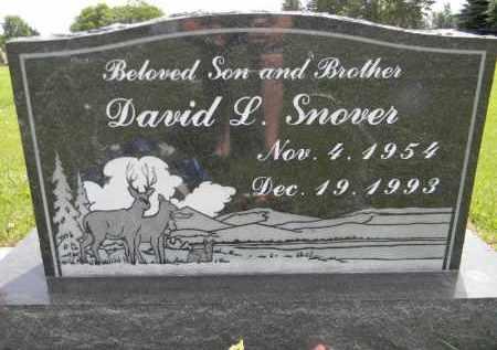 SNOVER, DAVID L. - Dodge County, Nebraska   DAVID L. SNOVER - Nebraska Gravestone Photos