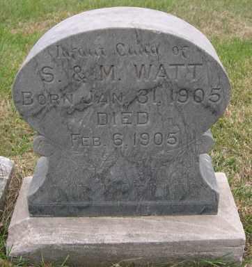 WATT, PAUL ARTHUR - Dodge County, Nebraska | PAUL ARTHUR WATT - Nebraska Gravestone Photos