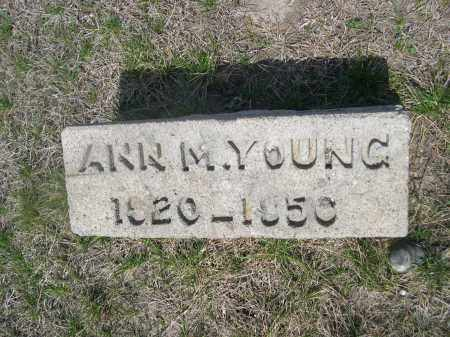 YOUNG, ANN M. - Dodge County, Nebraska | ANN M. YOUNG - Nebraska Gravestone Photos