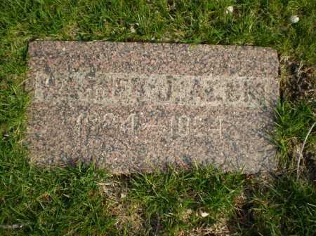 ALBIN, WARNER J. - Douglas County, Nebraska | WARNER J. ALBIN - Nebraska Gravestone Photos