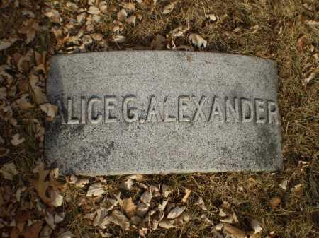 ALEXANDER, ALICE G. - Douglas County, Nebraska | ALICE G. ALEXANDER - Nebraska Gravestone Photos