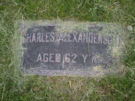 ALEXANDERSON, CHARLES - Douglas County, Nebraska   CHARLES ALEXANDERSON - Nebraska Gravestone Photos
