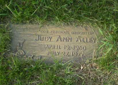 ALLEY, JUDY ANN - Douglas County, Nebraska | JUDY ANN ALLEY - Nebraska Gravestone Photos