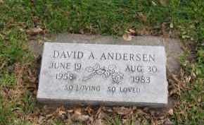 ANDERSEN, DAVID A. - Douglas County, Nebraska | DAVID A. ANDERSEN - Nebraska Gravestone Photos
