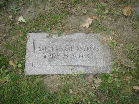 ANDREWS, SANDRA JANE - Douglas County, Nebraska | SANDRA JANE ANDREWS - Nebraska Gravestone Photos