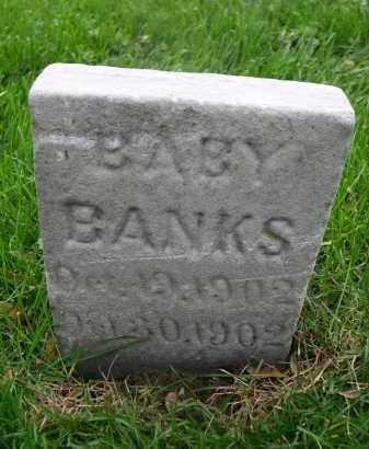 BANKS, BABY - Douglas County, Nebraska | BABY BANKS - Nebraska Gravestone Photos