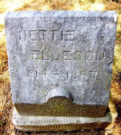 ELLESON, NETTIE - Douglas County, Nebraska | NETTIE ELLESON - Nebraska Gravestone Photos