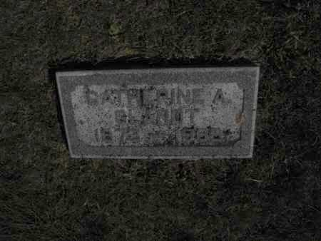 GLANDT, CATHERINE - Douglas County, Nebraska | CATHERINE GLANDT - Nebraska Gravestone Photos
