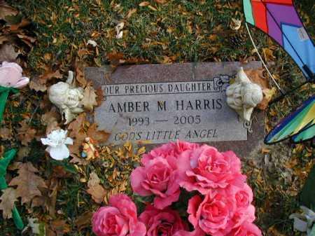 HARRIS, AMBER M - Douglas County, Nebraska | AMBER M HARRIS - Nebraska Gravestone Photos