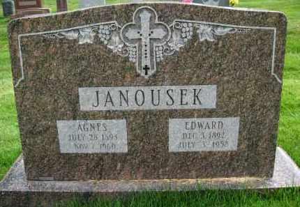 JANOUSEK, AGNES - Douglas County, Nebraska | AGNES JANOUSEK - Nebraska Gravestone Photos