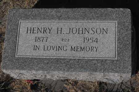 JOHNSON, HENRY - Douglas County, Nebraska | HENRY JOHNSON - Nebraska Gravestone Photos