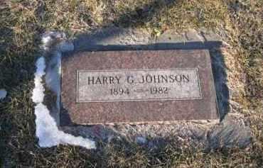 JOHNSON, HARRY G - Douglas County, Nebraska | HARRY G JOHNSON - Nebraska Gravestone Photos