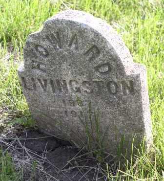 LIVINGSTON, HOWARD - Douglas County, Nebraska   HOWARD LIVINGSTON - Nebraska Gravestone Photos