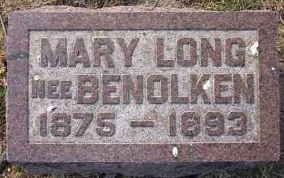 LONG, MARY - Douglas County, Nebraska   MARY LONG - Nebraska Gravestone Photos