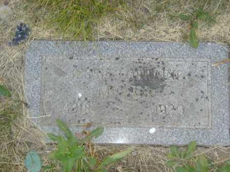 MC COY, JESSIE LORRAINE - Douglas County, Nebraska | JESSIE LORRAINE MC COY - Nebraska Gravestone Photos