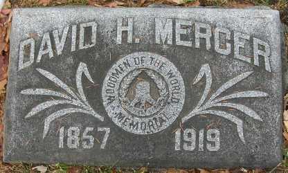 MERCER, DAVID HENRY - Douglas County, Nebraska | DAVID HENRY MERCER - Nebraska Gravestone Photos