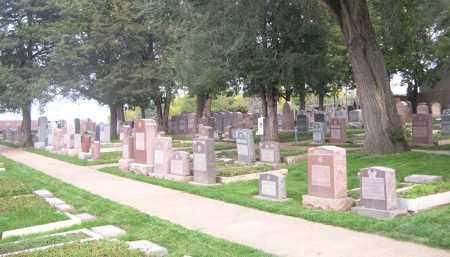 *MOUNT SINAI CEMETERY, VIEW OF - Douglas County, Nebraska | VIEW OF *MOUNT SINAI CEMETERY - Nebraska Gravestone Photos