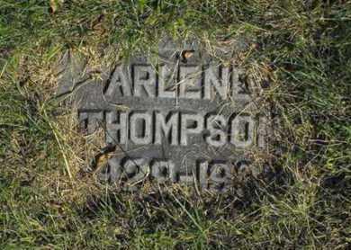 NELSON, ARLENE - Douglas County, Nebraska   ARLENE NELSON - Nebraska Gravestone Photos