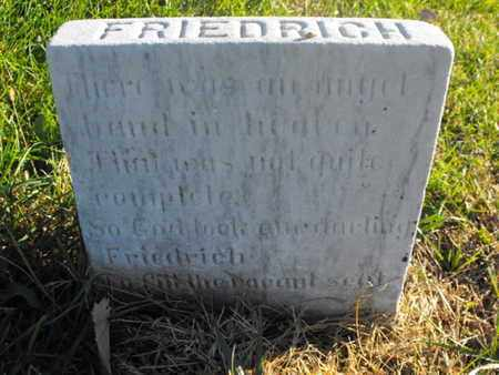NEUHAUS, FRIEDRICH - Douglas County, Nebraska | FRIEDRICH NEUHAUS - Nebraska Gravestone Photos