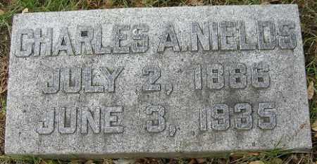 NIELDS, CHARLES A. - Douglas County, Nebraska   CHARLES A. NIELDS - Nebraska Gravestone Photos
