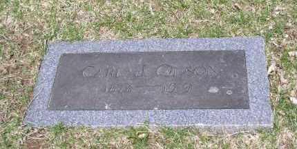 OLSON, CARL J. - Douglas County, Nebraska | CARL J. OLSON - Nebraska Gravestone Photos