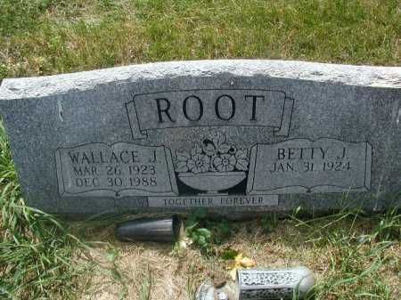 ROOT, WALLACE J - Douglas County, Nebraska | WALLACE J ROOT - Nebraska Gravestone Photos