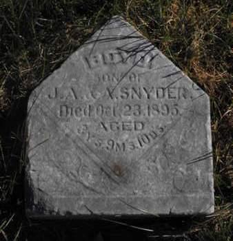 SNYDER, BOYD - Douglas County, Nebraska | BOYD SNYDER - Nebraska Gravestone Photos