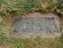 PENSICK STEVENSON, AGNES M - Douglas County, Nebraska | AGNES M PENSICK STEVENSON - Nebraska Gravestone Photos