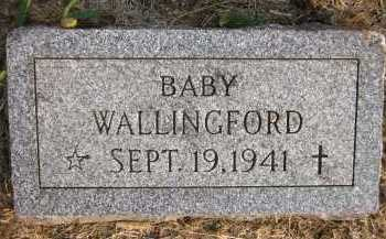 WALLINGFORD, BABY - Douglas County, Nebraska | BABY WALLINGFORD - Nebraska Gravestone Photos