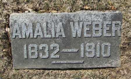 WEBER, AMALIA - Douglas County, Nebraska   AMALIA WEBER - Nebraska Gravestone Photos