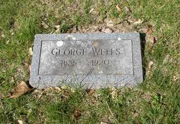 WELLS, GEORGE - Douglas County, Nebraska | GEORGE WELLS - Nebraska Gravestone Photos