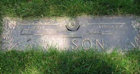 WILSON, ALBERT ERLE - Douglas County, Nebraska   ALBERT ERLE WILSON - Nebraska Gravestone Photos