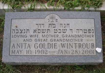WINTROUB, ANITA GOLDIE - Douglas County, Nebraska | ANITA GOLDIE WINTROUB - Nebraska Gravestone Photos