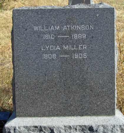 MILLER, LYDIA - Dundy County, Nebraska   LYDIA MILLER - Nebraska Gravestone Photos
